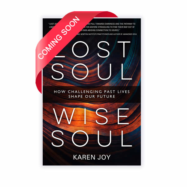 Lost Soul Wise Soul Book Karen Joy